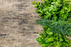 Fresh green dill and parsley herbs on rustic wooden table Stock Photo