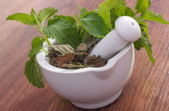 Fresh green and dried lemon balm in mortar, herbalism, alternative medicine Stock Image