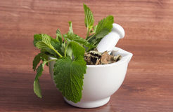 Fresh green and dried lemon balm in mortar, herbalism, alternative medicine Stock Photography