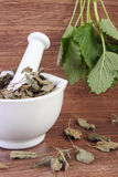 Fresh green and dried lemon balm in mortar, herbalism, alternative medicine Stock Photography