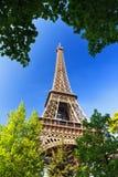 Fresh green Eiffel Royalty Free Stock Photo