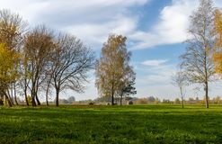 Fresh green field with autumn trees sky and clouds stock images