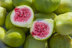 Fresh green figs. Fresh ripe green figs in the sun royalty free stock photos