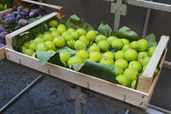 Fresh green figs on Sorrento - Italy Stock Photography