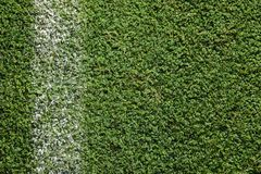 Fresh green football field grass. As background royalty free stock image