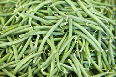 Fresh green French bean background Royalty Free Stock Images