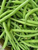 Fresh green French beans Royalty Free Stock Image