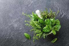 Fresh green garden herbs in mortar bowl on black stone table top view. Thyme, rosemary, basil, and tarragon for cooking. Royalty Free Stock Photography
