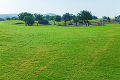 Fresh Green of Golf Field Royalty Free Stock Photography