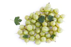 Fresh green gooseberry Stock Photo