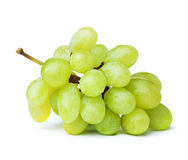 Fresh green grapes Stock Images