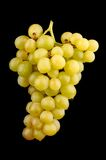 Fresh green grapes Royalty Free Stock Photos