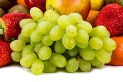 Fresh green grapes Stock Image
