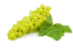 Fresh green grapes isolated on white. Royalty Free Stock Photography