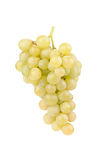 Fresh green grapes with leaves Stock Photo