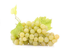 Fresh green grapes with leaves Stock Photography
