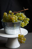 Fresh green grapes Stock Photo
