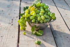 Fresh green grapes Stock Photo
