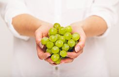 Fresh Green Grapes Are Perfect As Snack Royalty Free Stock Image