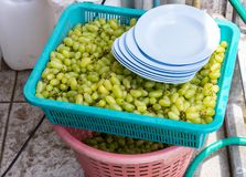 Fresh green grapes in the plastic tray. stock photo