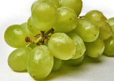 Fresh green grapes on white background with waterdrops. Stock Image