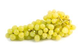 Fresh green grapes  on white background Stock Photos