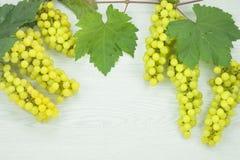 Fresh green grapes on wood floor. Royalty Free Stock Photos