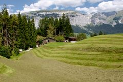 Fresh green grass in Alpine meadow surrounded by mountains. Stock Photography