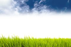 Fresh green grass as border on the lower side of the horizontal frame in a seamless empty white background with blue sky. With clouds on top. Useful as design royalty free stock photo