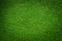 Fresh green grass Stock Photos
