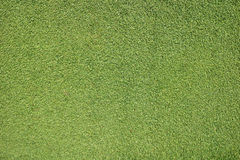 The fresh green grass of the beautiful golf course, use as backg Stock Photos