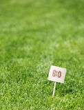 Fresh green grass with a Bio label Royalty Free Stock Photos