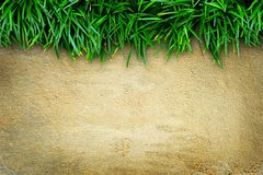 Fresh green grass and concrete Stock Image