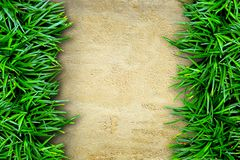 Fresh green grass and concrete Royalty Free Stock Photography