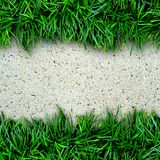 Fresh green grass and concrete Stock Images