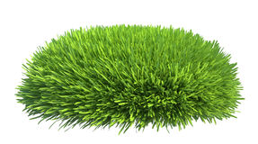 Fresh green grass isolated on white background Stock Photos