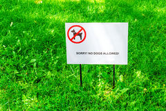 "Fresh green grass on the lawn. Plate with the inscription Sorry! No dogs allowed. Fresh green grass on the lawn. Plate with the inscription ""Sorry! No dogs Royalty Free Stock Images"