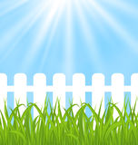 Fresh green grass over wood fence background Stock Photo