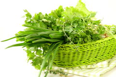 Fresh green grass parsley dill onion Royalty Free Stock Photo