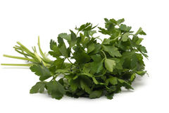 Fresh green grass parsley dill onion herbs mix Royalty Free Stock Photography