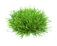 Fresh green grass piece of land isolated on white Stock Images