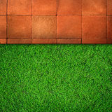 Fresh green grass and  red brick Royalty Free Stock Image