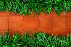 Fresh green grass and red brick Stock Images