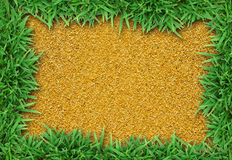 Fresh green grass on sand Royalty Free Stock Photography