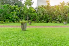 Fresh green grass smooth lawn as a carpet with plant pot,  bush, trees in a backyard, building on background, good maintenance. Lanscapes in a luxury house`s royalty free stock image