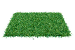 Fresh green grass on white background. 3D illustration. Empty space for your product or text Royalty Free Stock Image