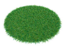 Fresh green grass on white background. 3D illustration. Empty space for your product or text Royalty Free Stock Images