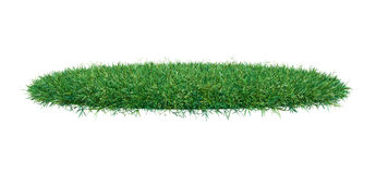 Fresh green grass on white background. 3D illustration. Empty space for your product or text Stock Images