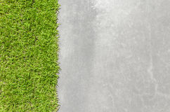 Fresh Green Grass With Polished Cement Surface Royalty Free Stock Photos
