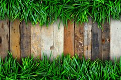 Fresh green grass and Wood Stock Photography